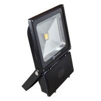 Светодиодный прожектор 100w Evro light
